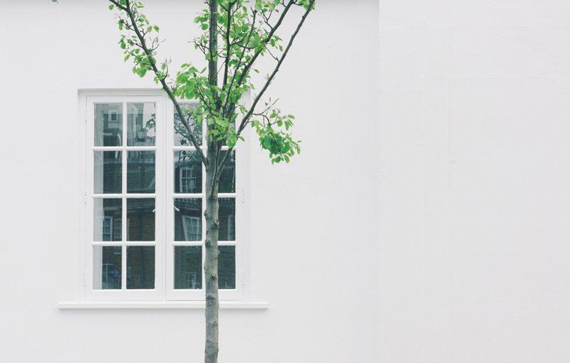 Pintar casa de blanca